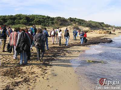le dune fossili
