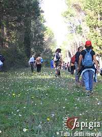 trekking alimini