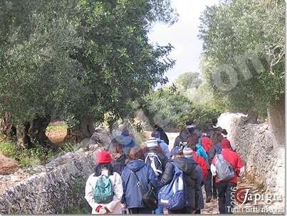 avanguardie trekking al monte di ostuni il 5 febbraio 2006