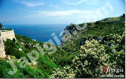 il canale del rio lungo la costa adriatica