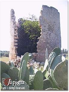 parco del rauccio, la torre colombaia