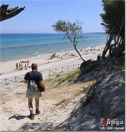 la spiaggia degli alimini