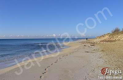 la spiaggia pesculuse