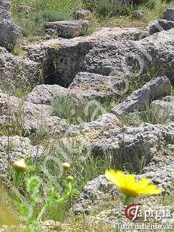 antica necropoli a ugento